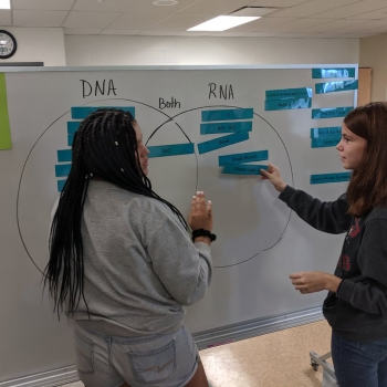 Reviewing DNA Concepts
